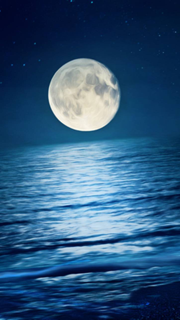Moon Night