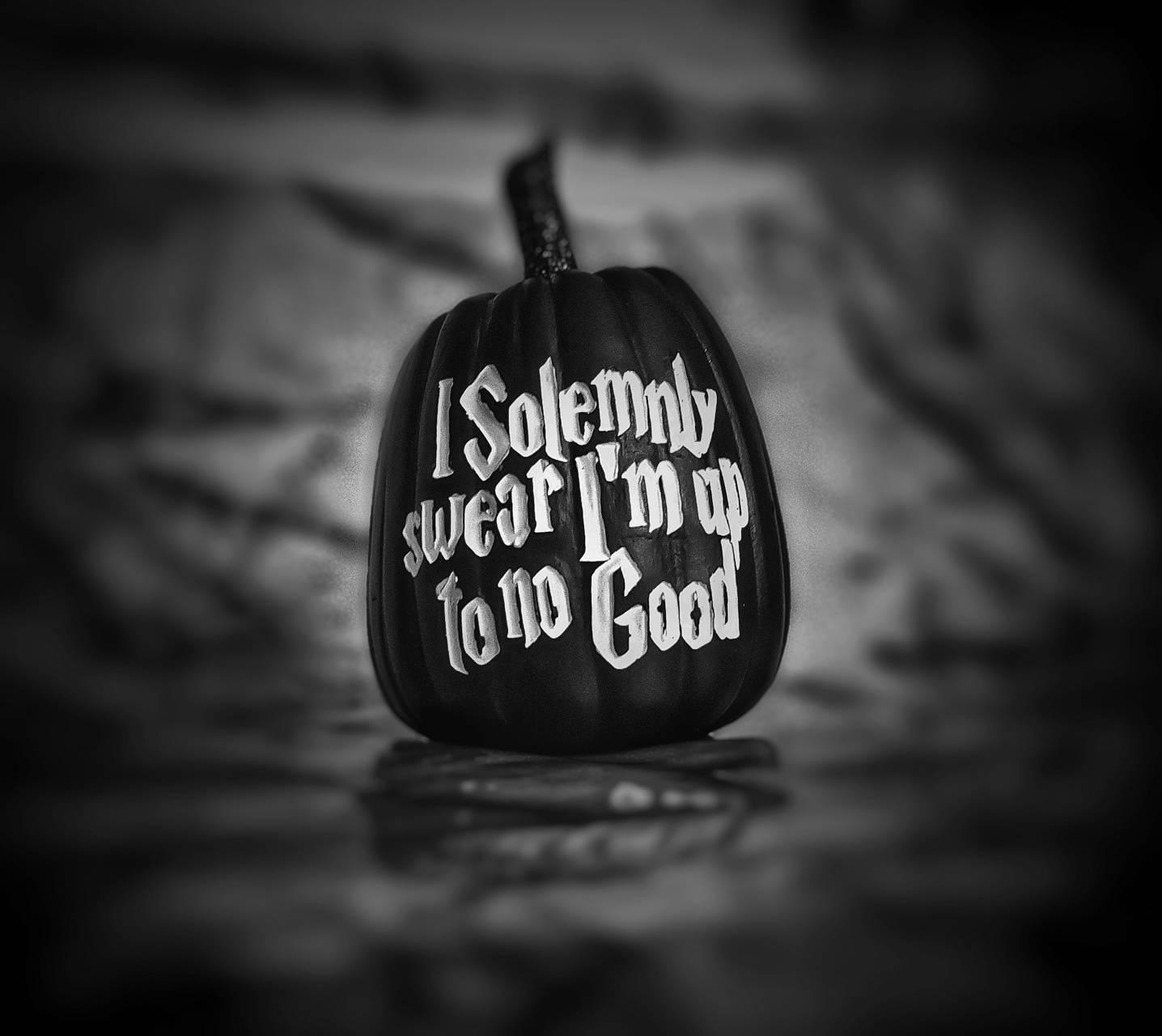 I solemnly swear