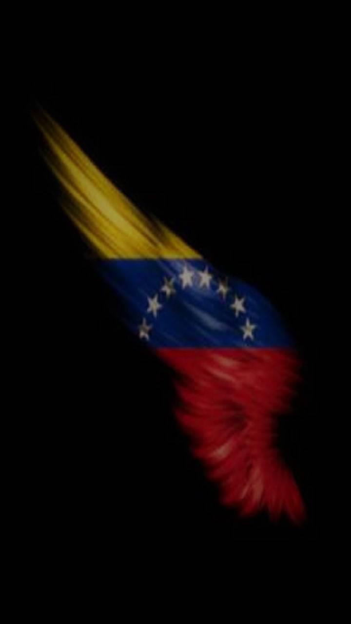 Ala Venezuela