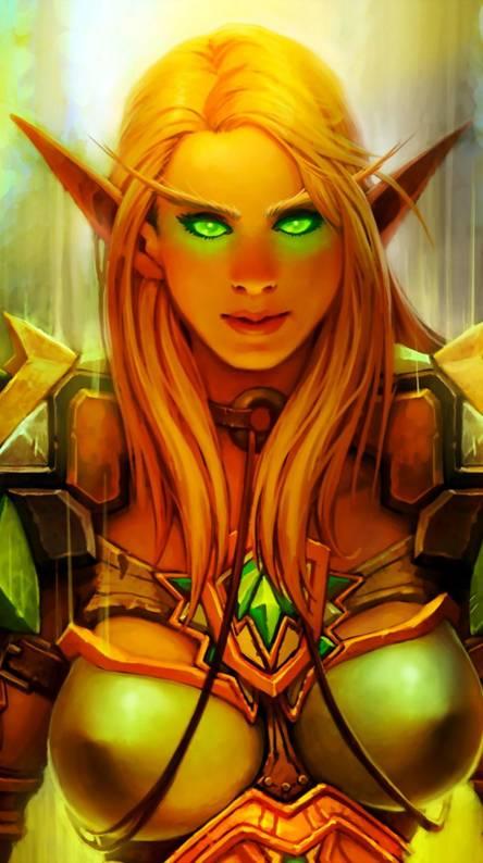 Paladin Blood Elf