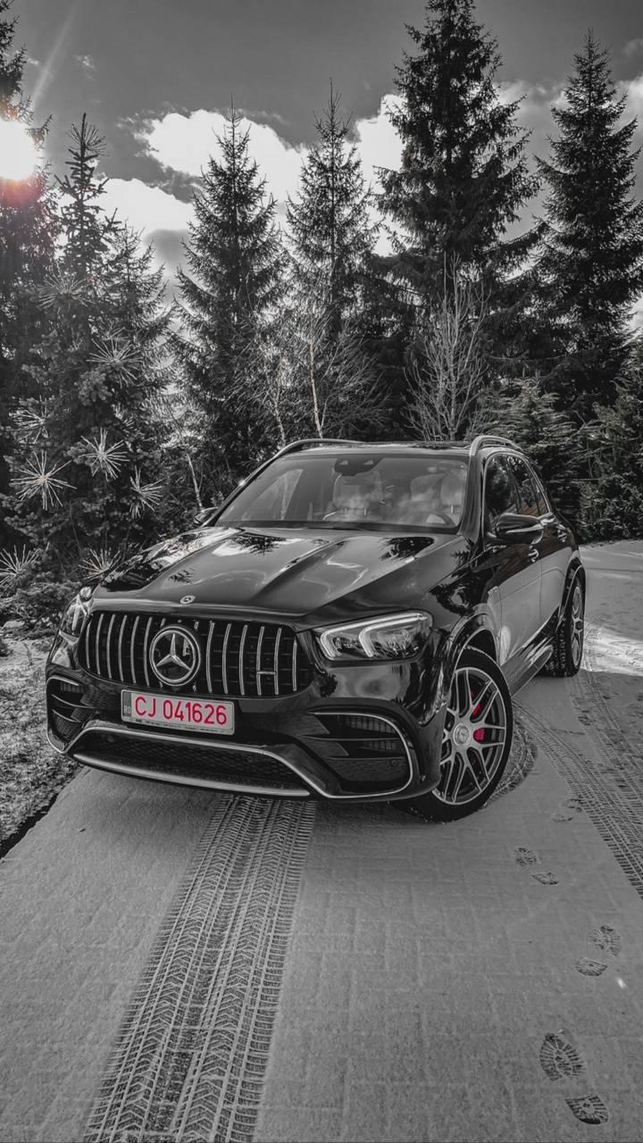 Mercedes Capusan
