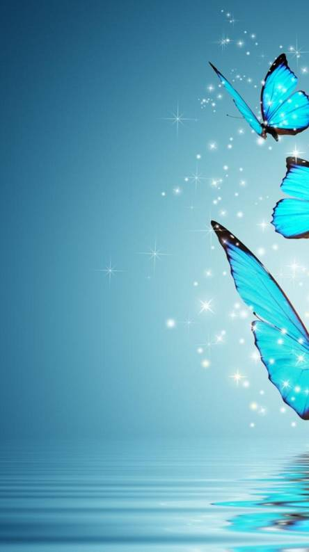 Blue Butterfly Wallpapers Free By Zedge