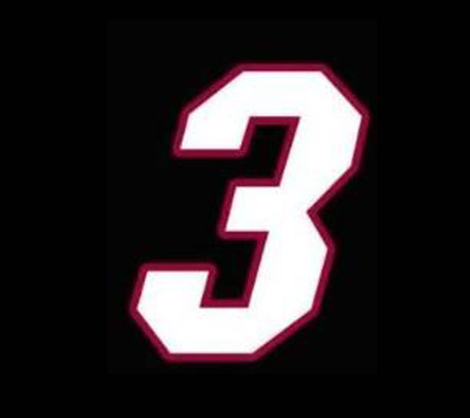 Dwayne Wade 3