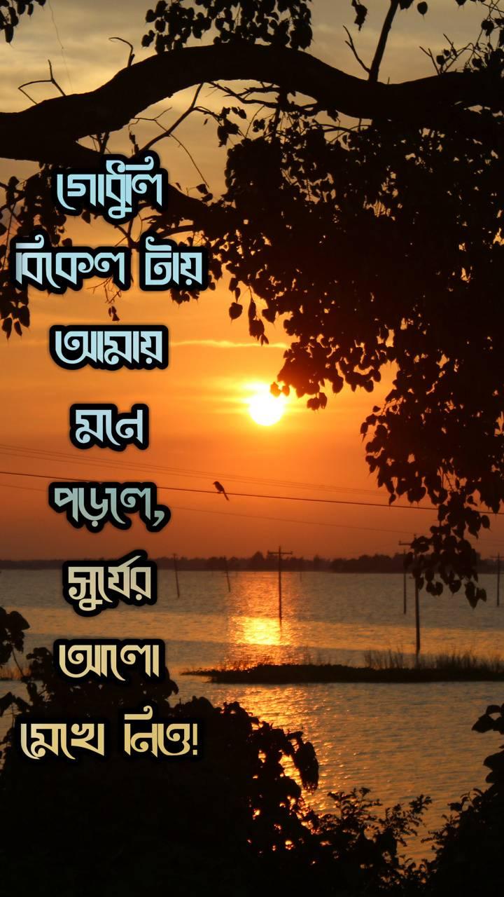 Bangla Saying
