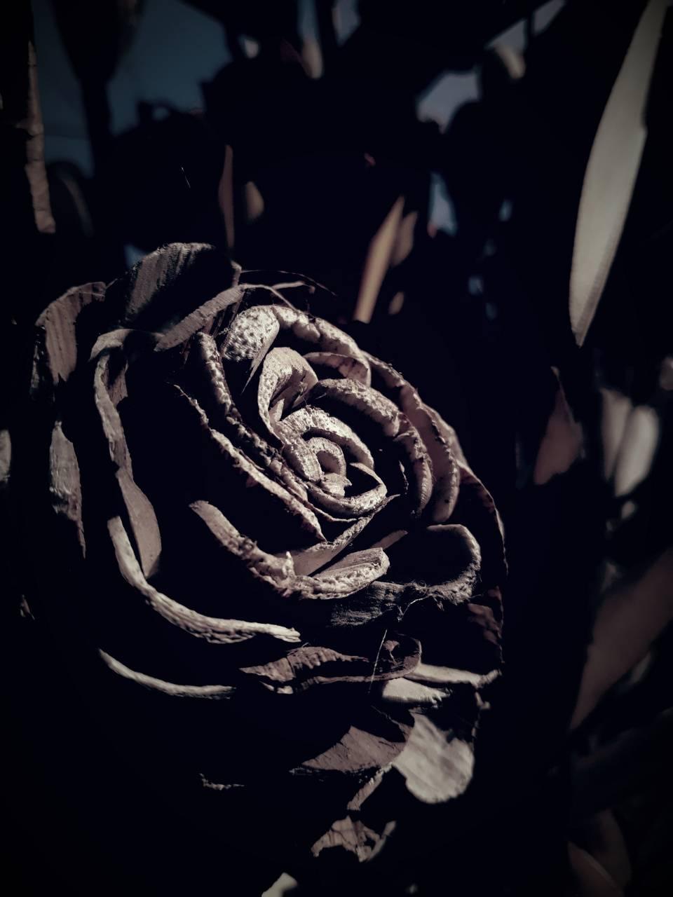 dark wooden flower