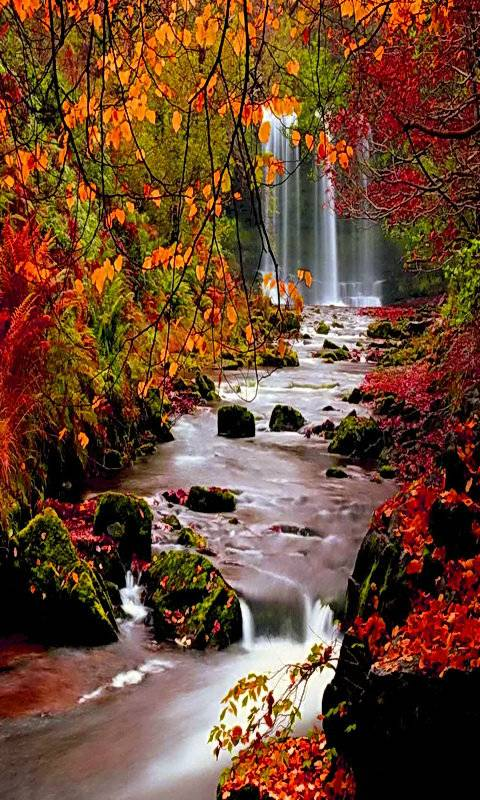 autumn waterfall wallpaper by Veer_vz - 73 - Free on ZEDGE™