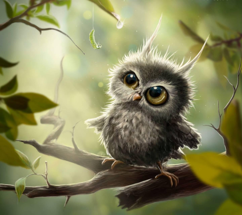 Free Owl Wallpapers: Little Owl Wallpaper By Venus_