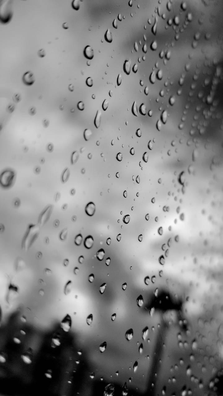 Rainy Day Ari photo
