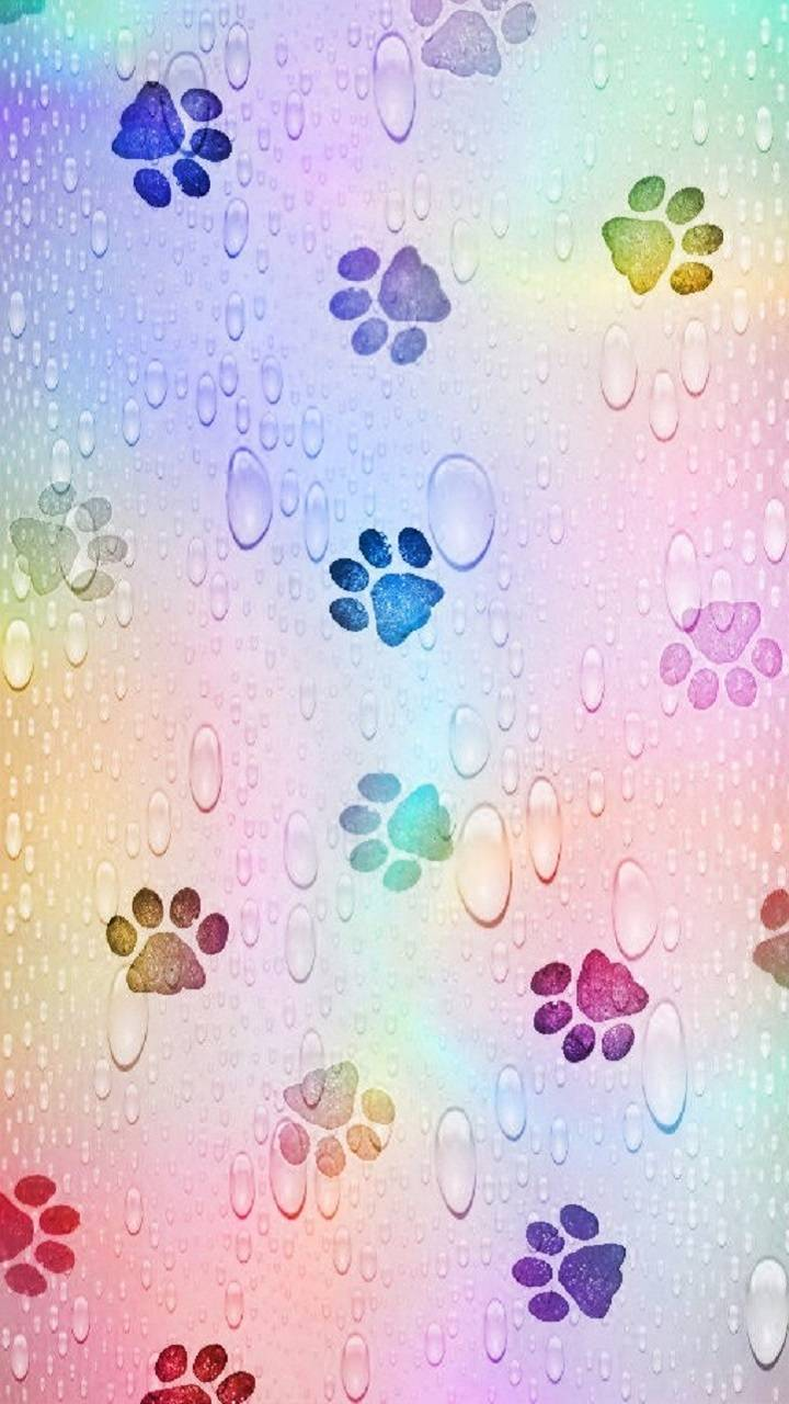 Paw print Wallpapers - Free by ZEDGE™