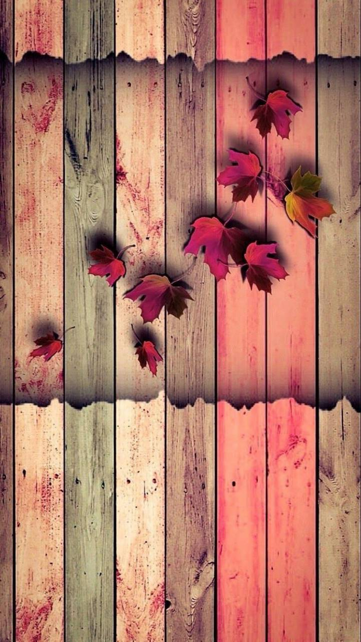 Leaves Wall