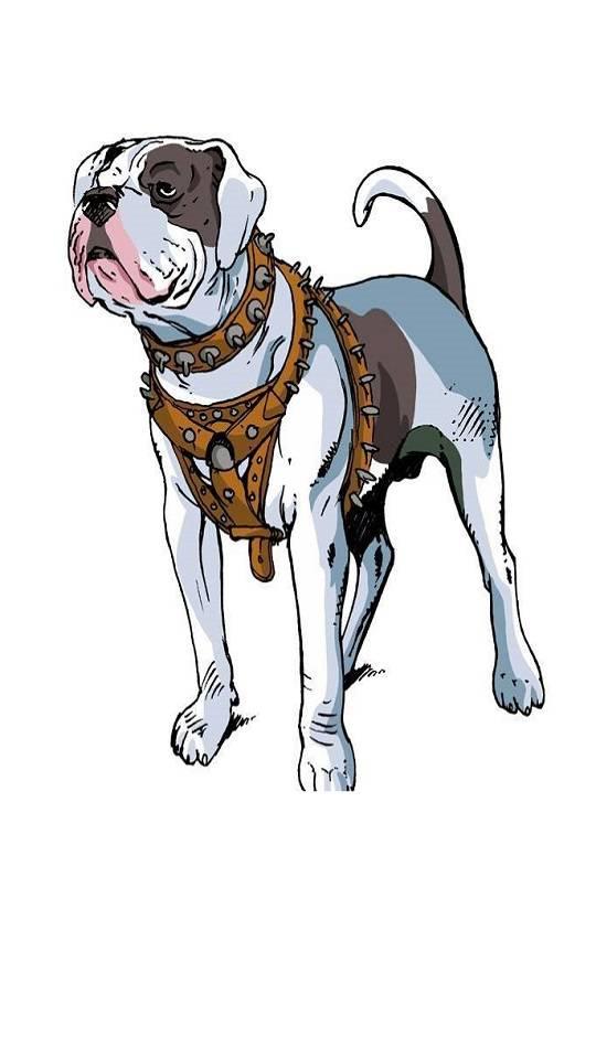 Aerican Bulldog