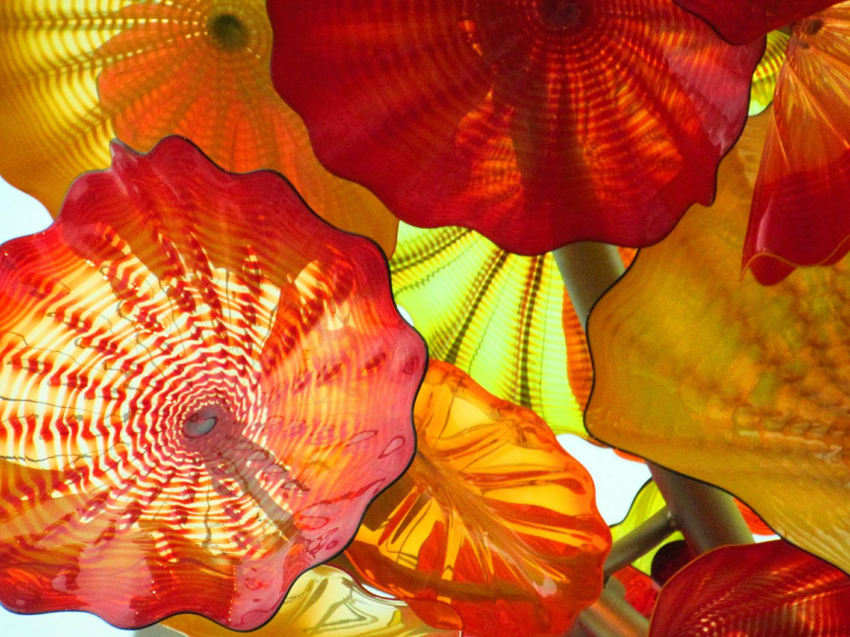 Chihuly warm colors4