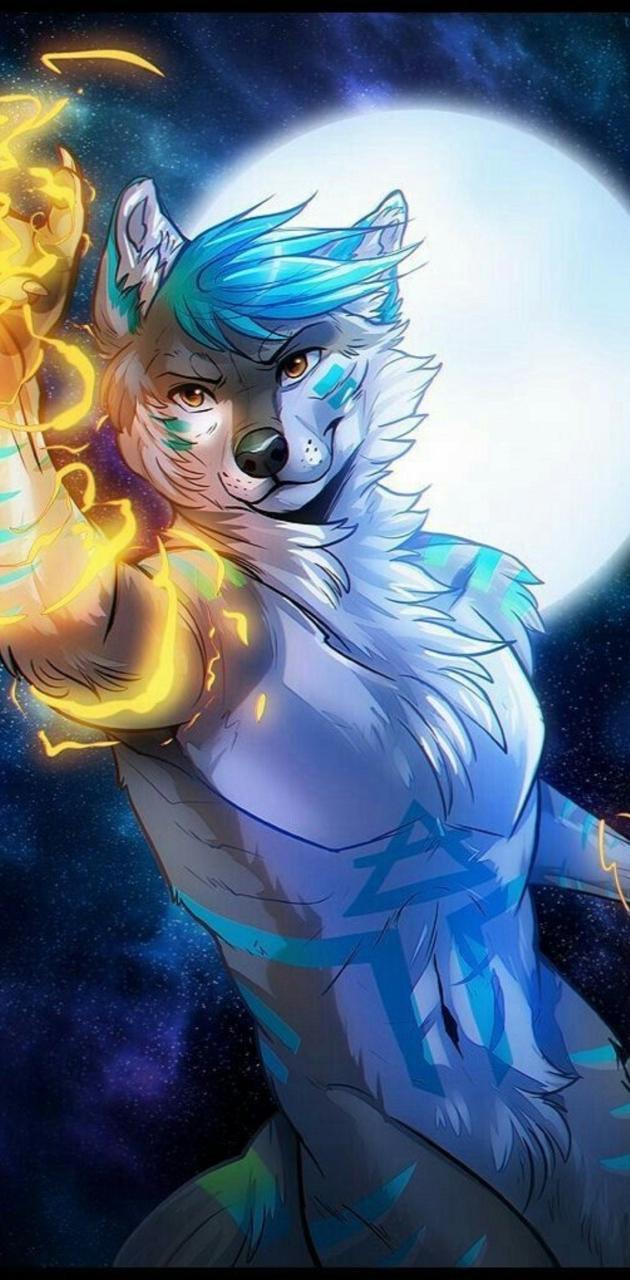 Fox da lua