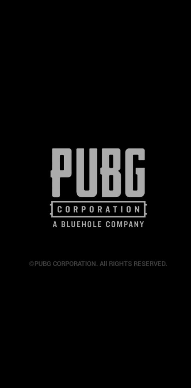 Pubg game
