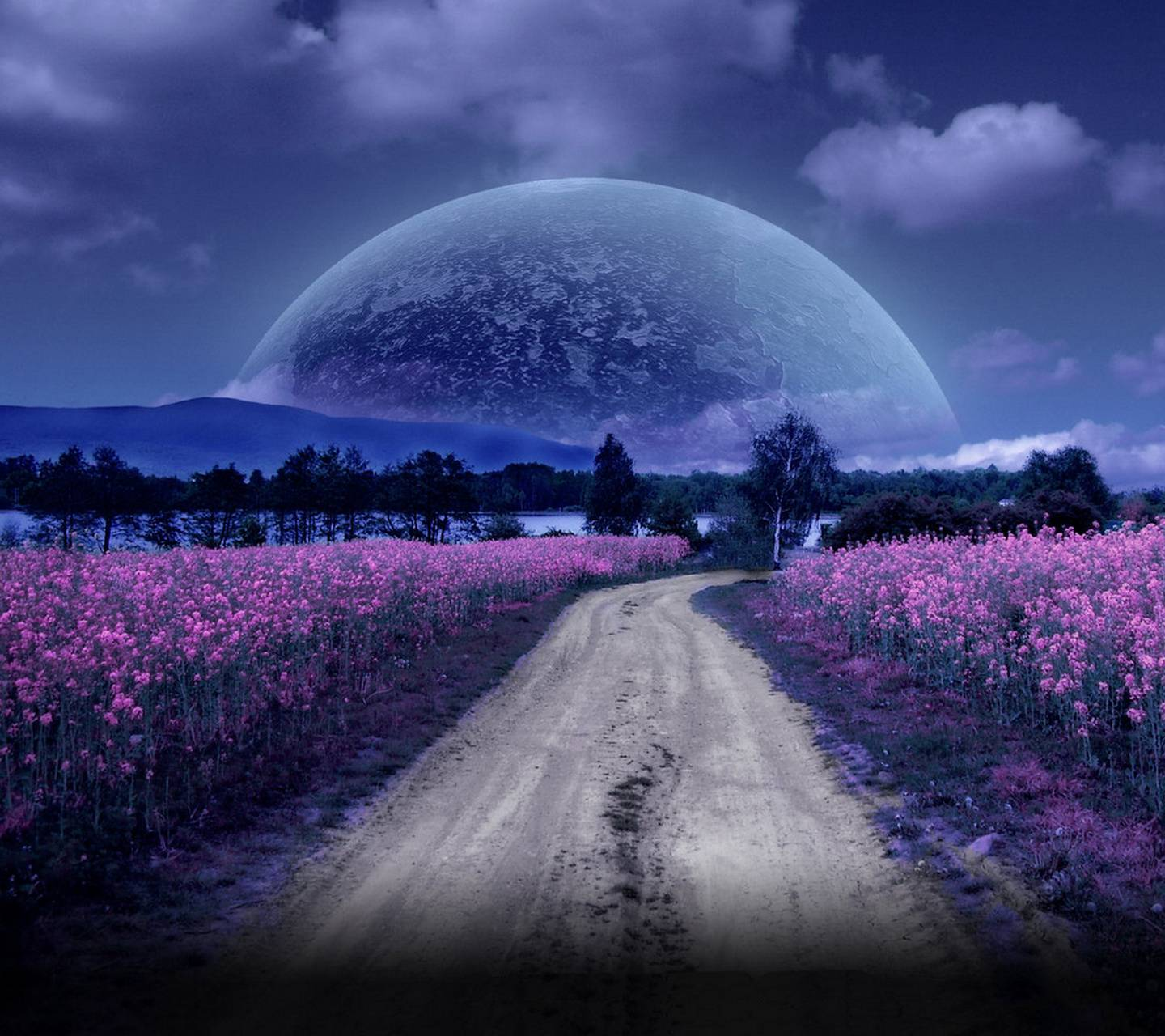Night Moon Road