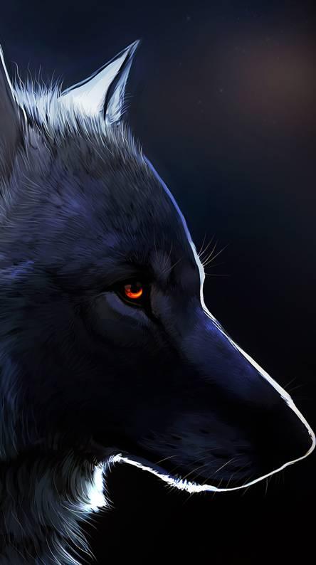 Dark Bare Wolf Wallpapers