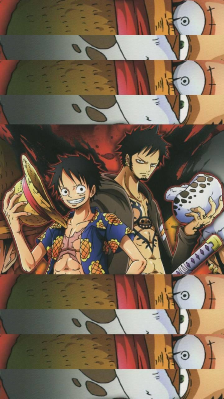 Luffy et Law