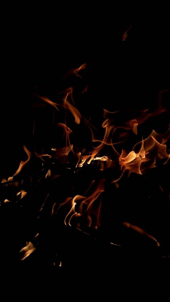 Fire night