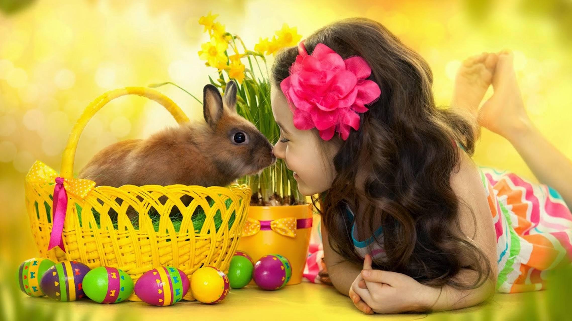 Kid Bunny Love