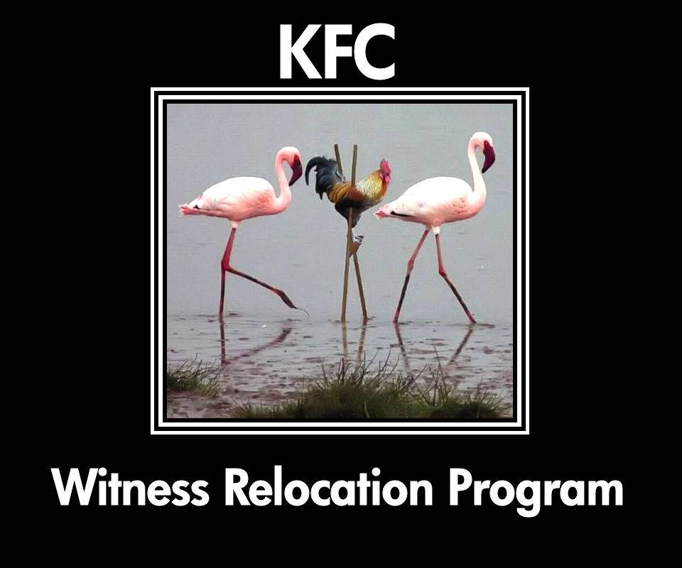 K F C Relocation