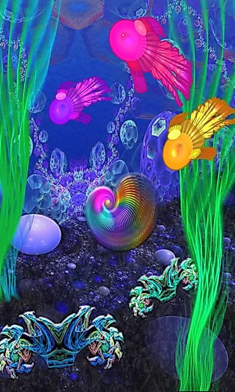 Undersea Wonders