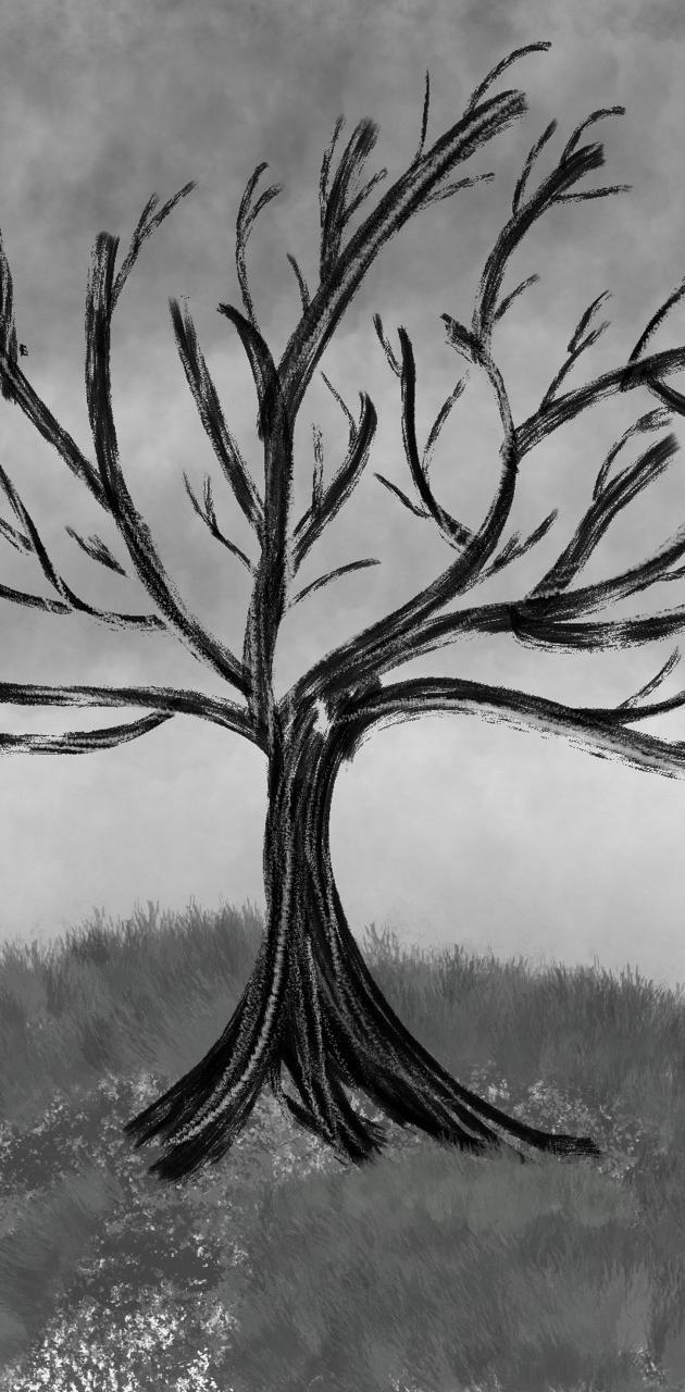 Aniley Tree