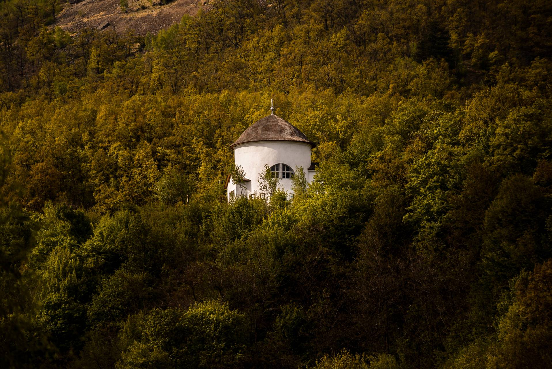 church in forest