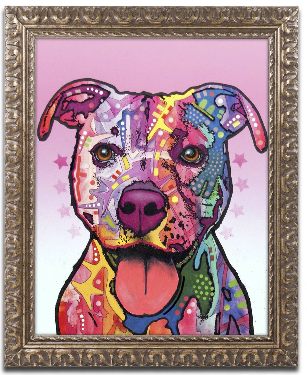 Colorful pit bull