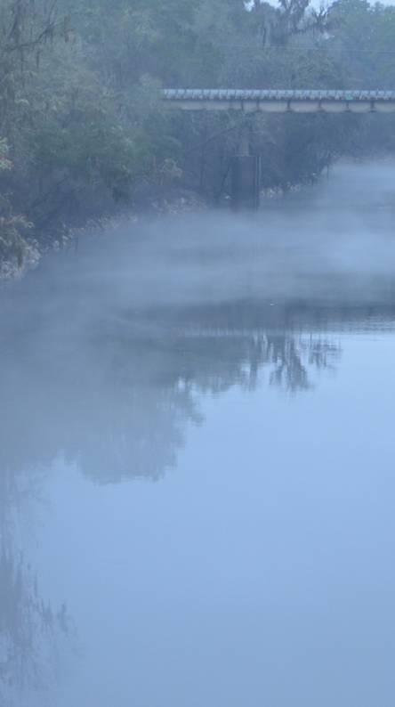 Fog on Suwannee