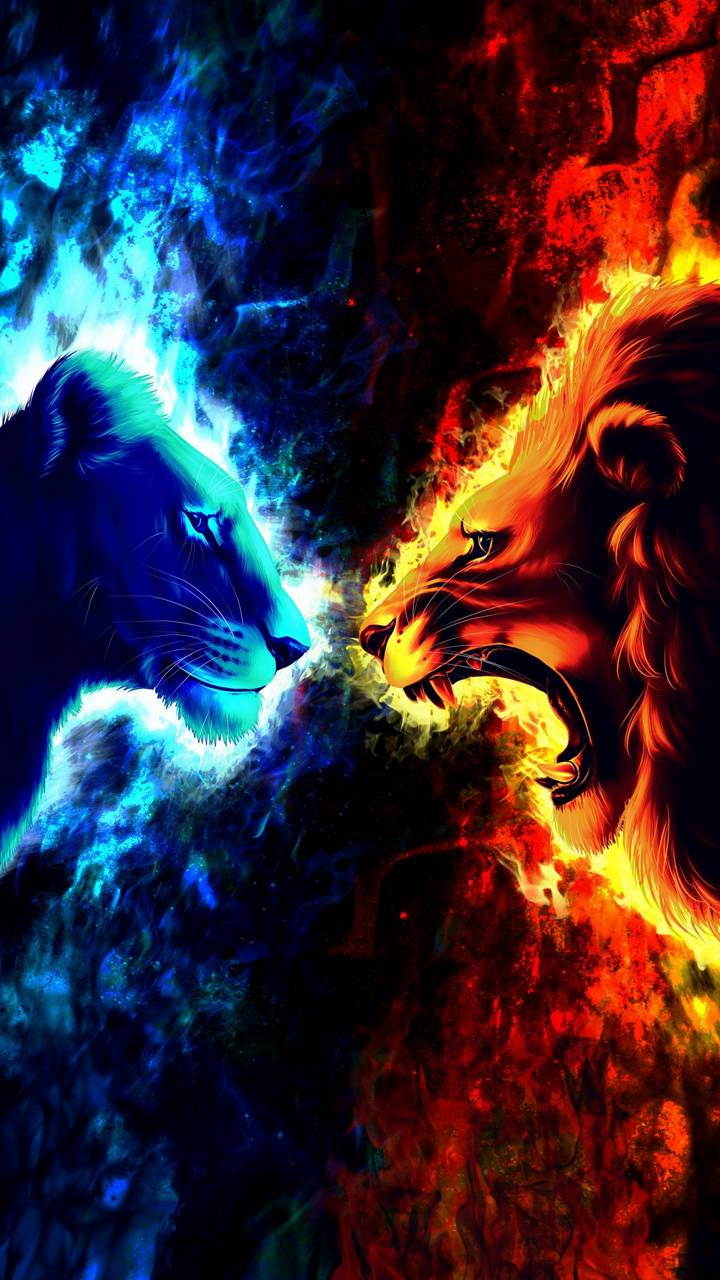 Fire And Ice Wallpaper By Georgekev 68 Free On Zedge