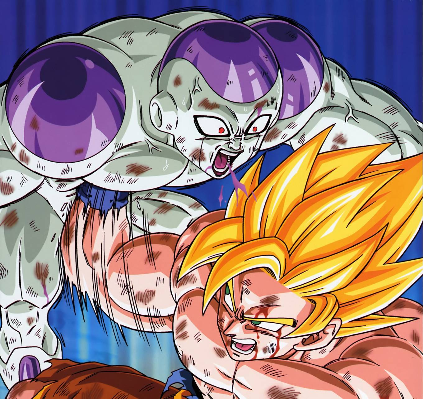 Dragon Ball Goku Vs Frieza