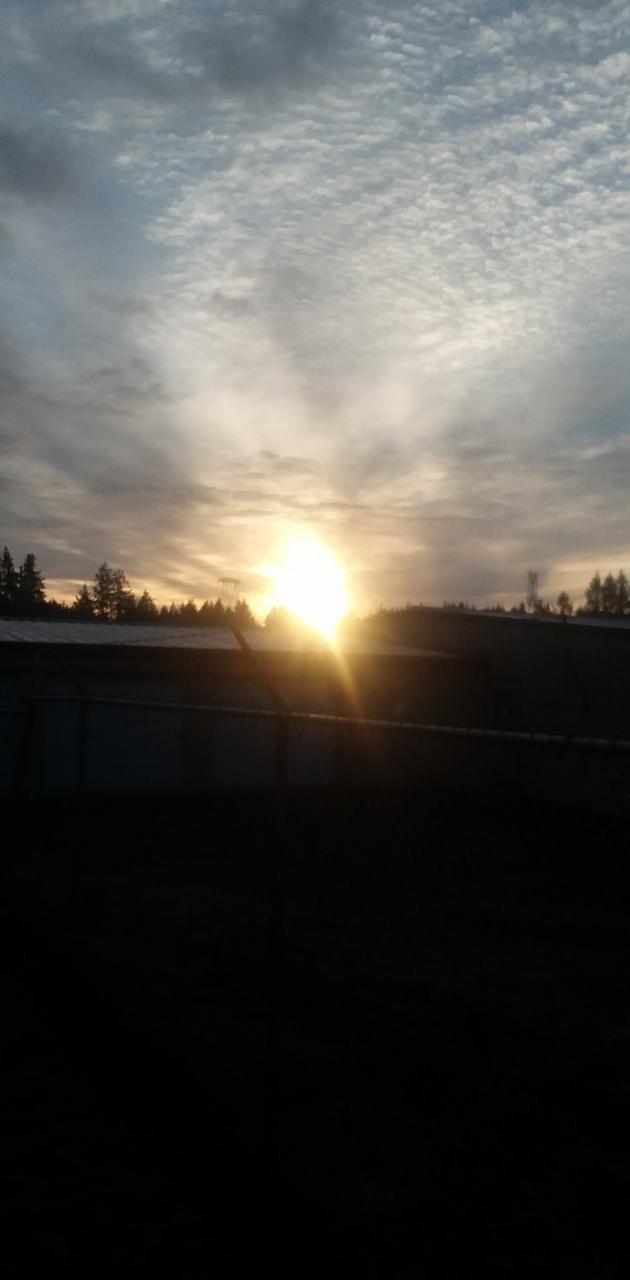 Say hello sun