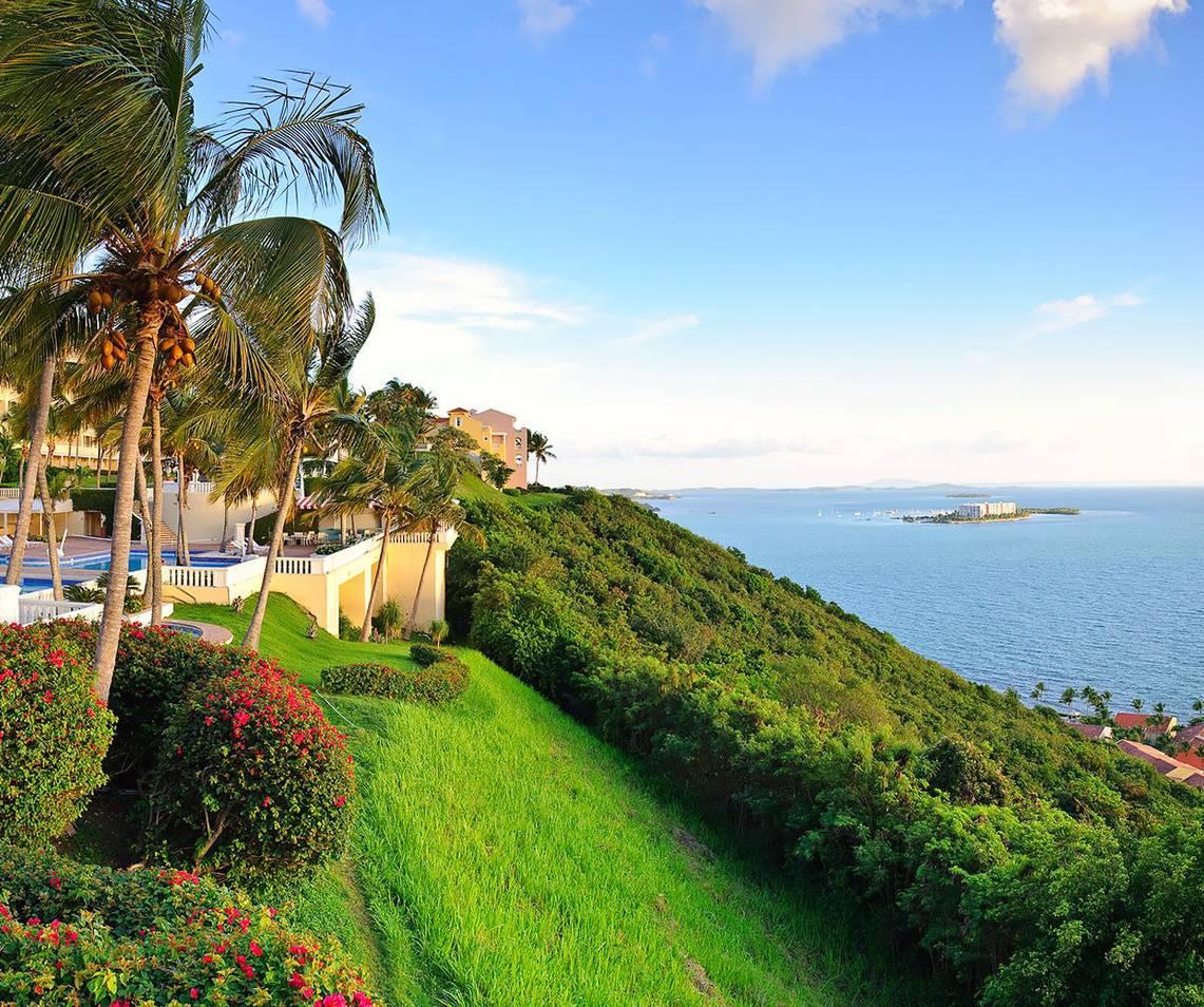 Beautiful View Hd