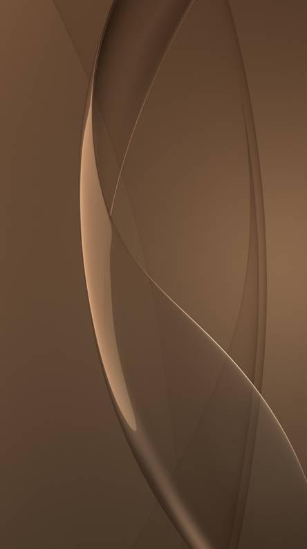 elegant brown