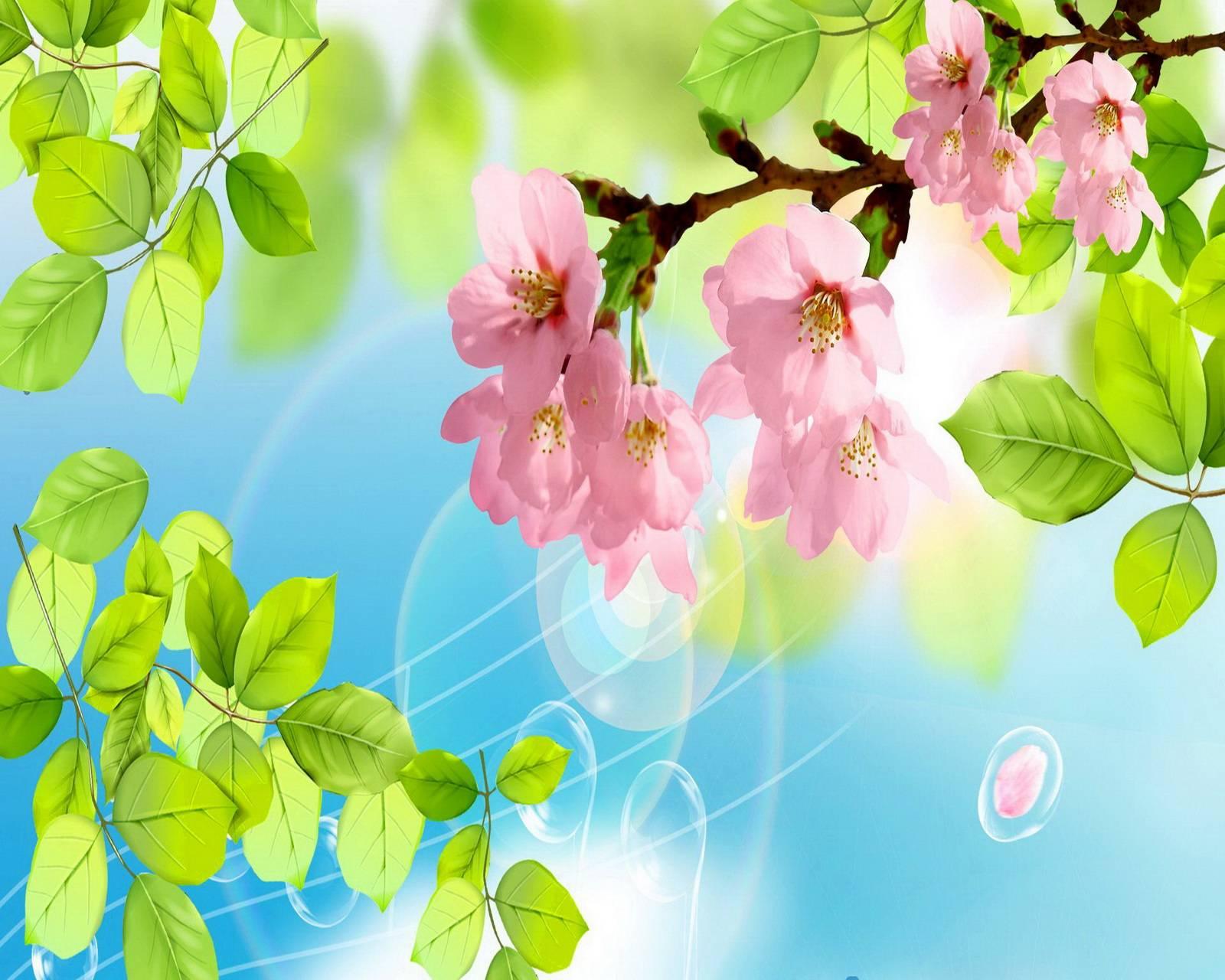 Sakura Magic