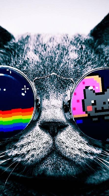Nyan Cat Wallpaper Iphone