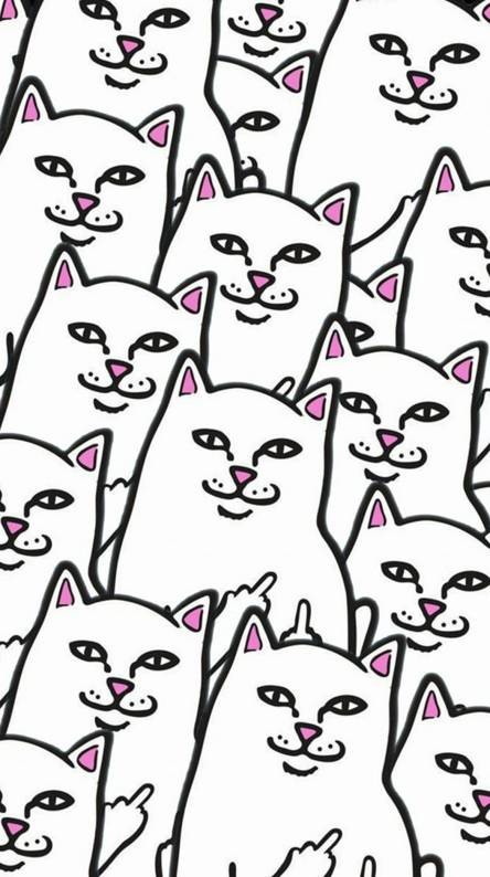 Ripndip Ringtones And Wallpapers Free By Zedge