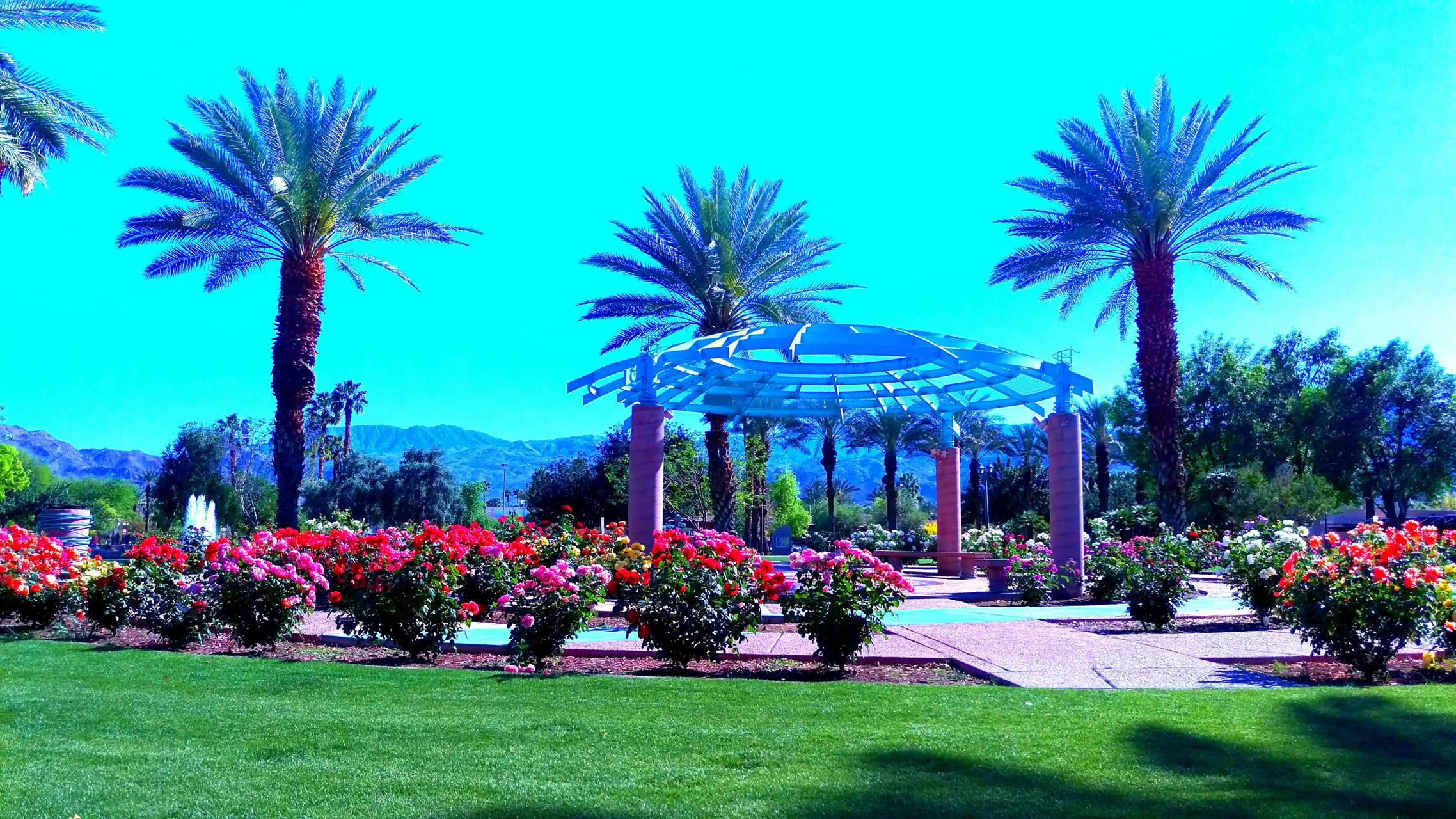 Gazebo roses palms