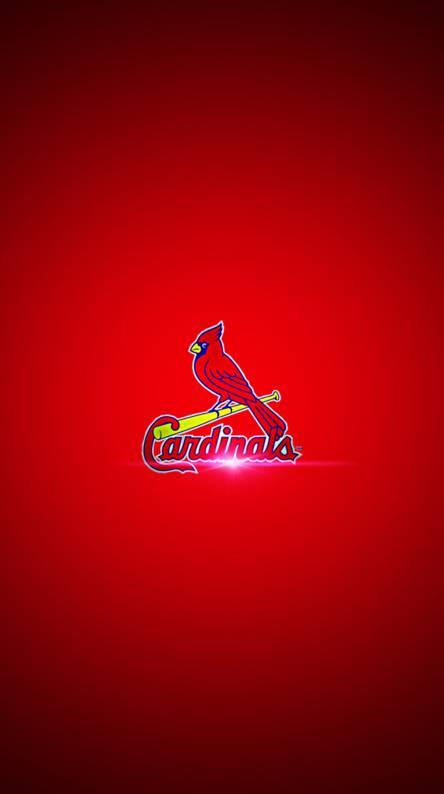St Louis Cardinals Wallpapers Free By Zedge