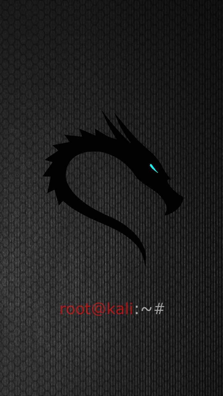 Kali Linux Wallpaper By Kutayheard 10 Free On Zedge