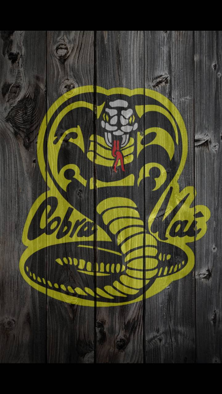 Cobra Kai wallpaper by woodyiow - 59 - Free on ZEDGE™