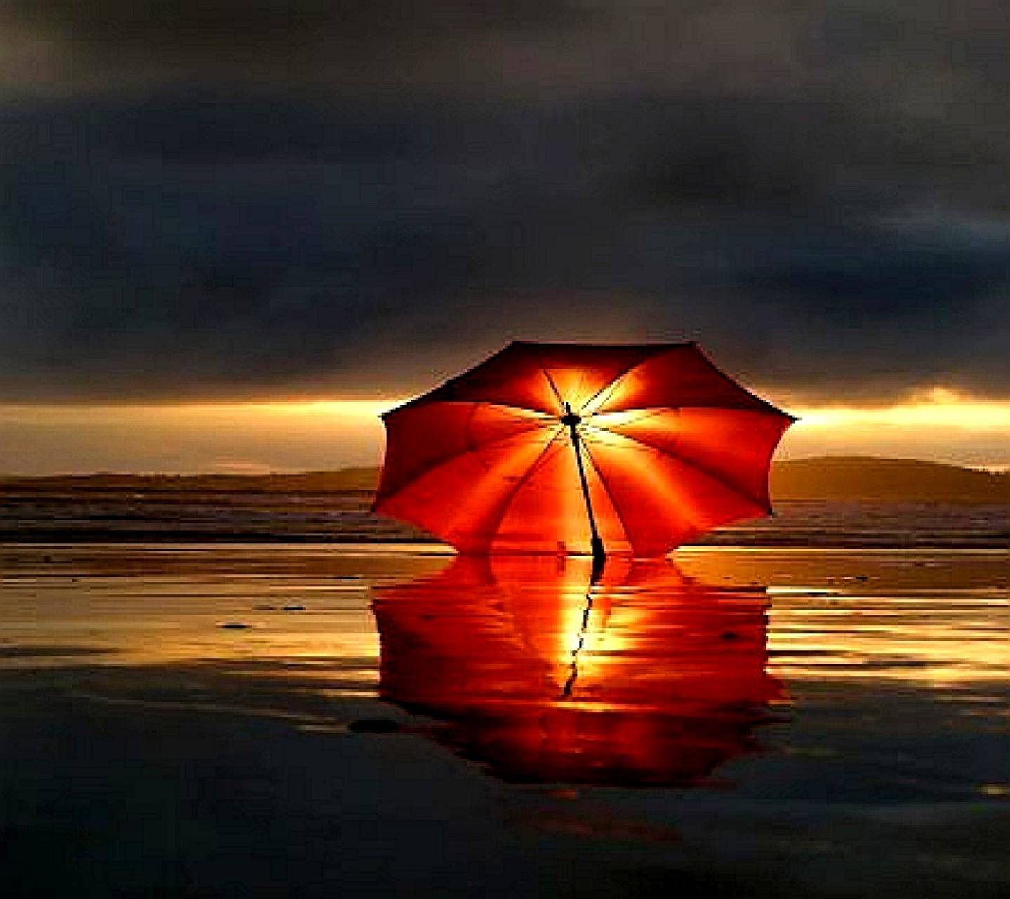 Red Umbrella Wallpaper By X