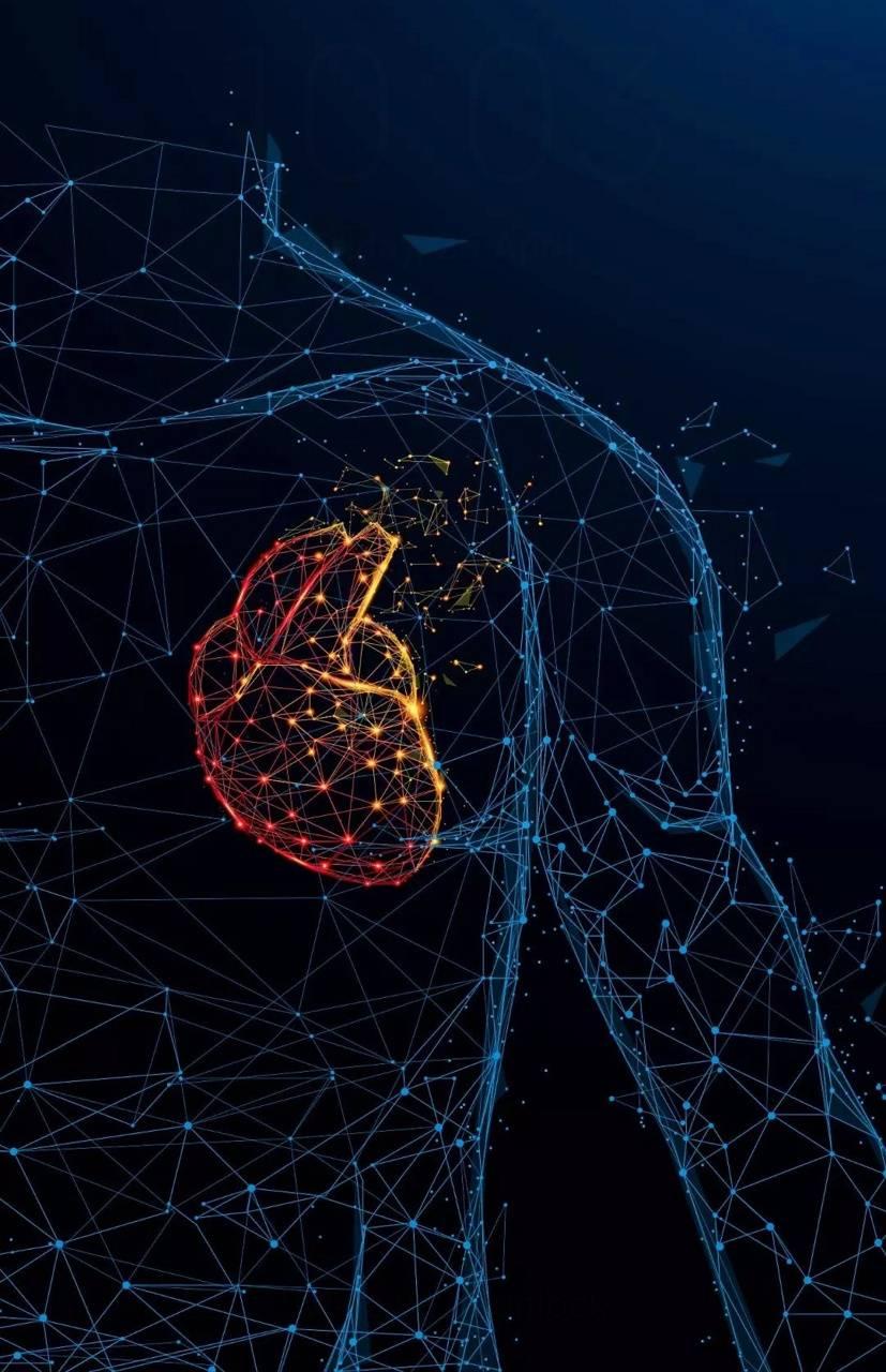 Digital Heart