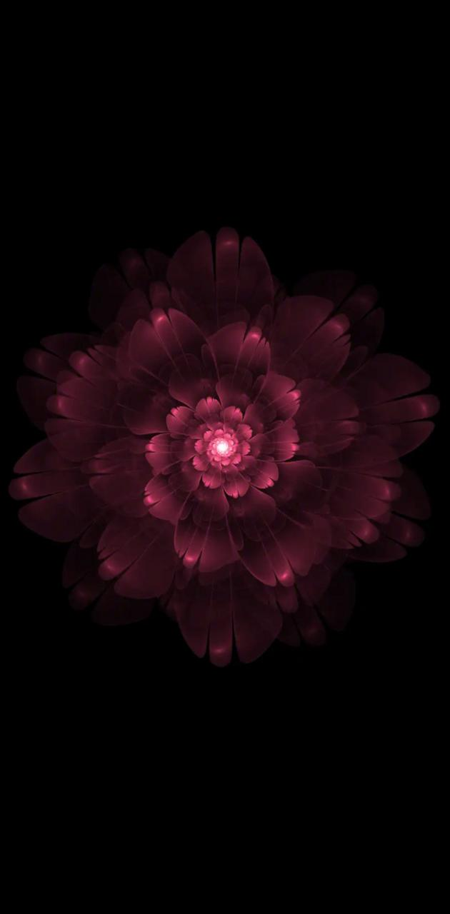 Oppo flower