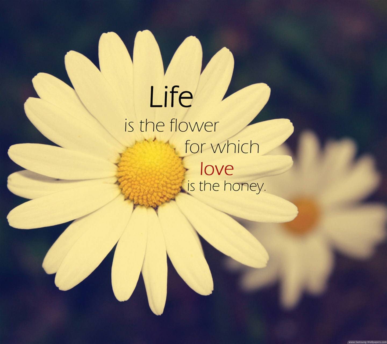 Life Flowers