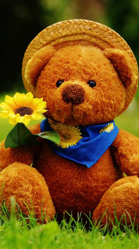 Cute Teddy Bear Wallpapers Free By Zedge