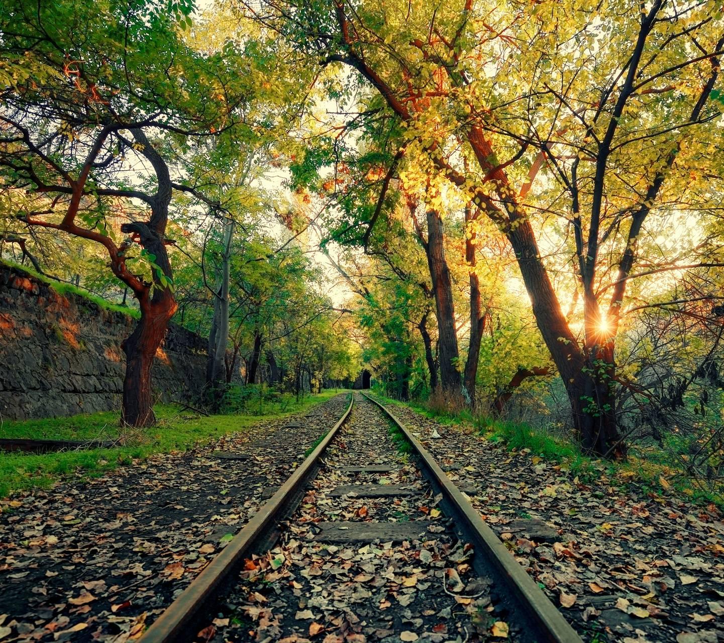 Autumn Railway