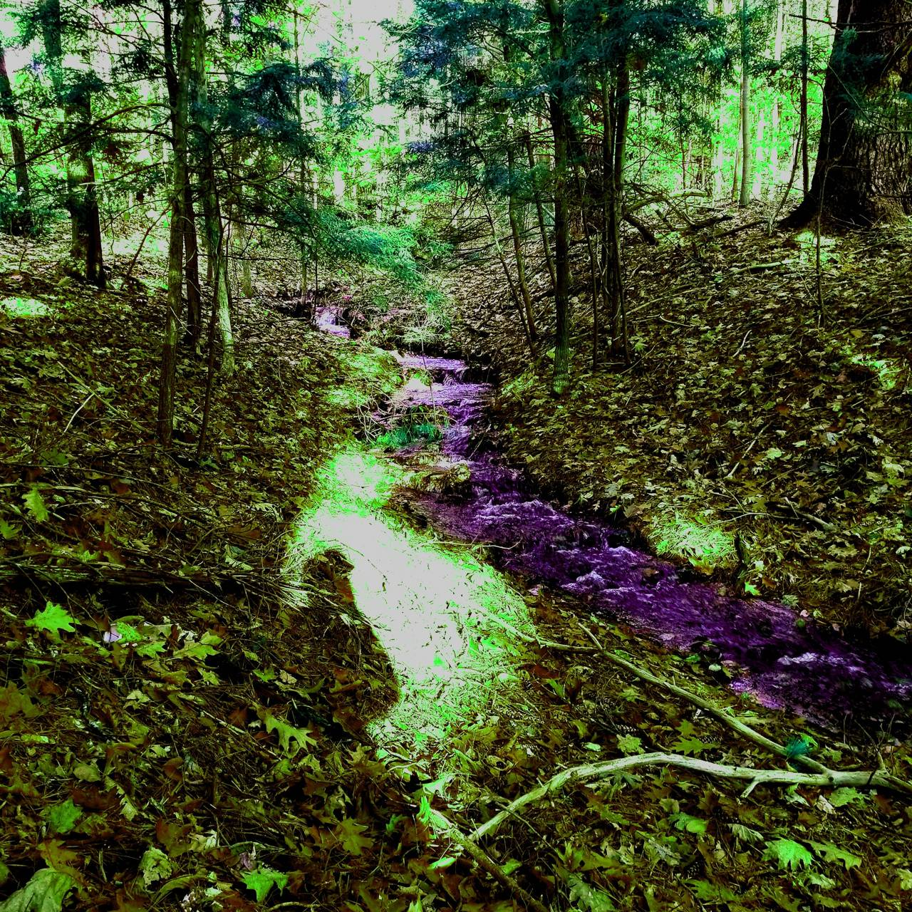 River of magic