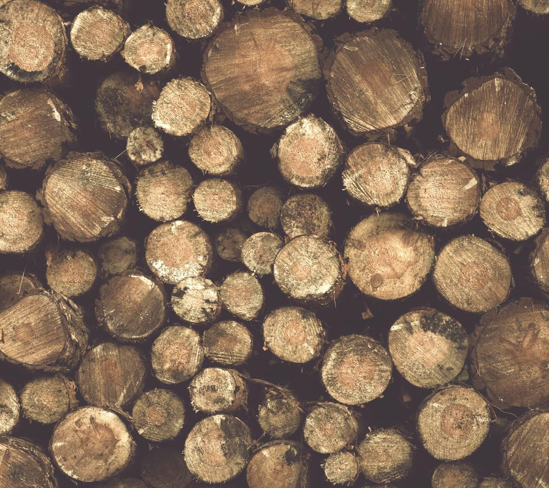 Wood 6