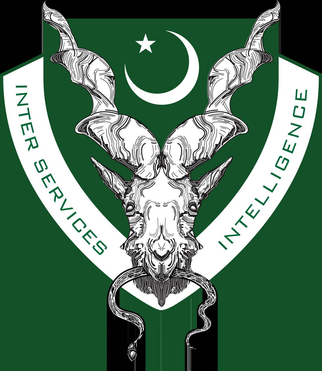 Pakistan Agency Logo